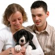 Royalty-Free Stock Photo: Young couple and dog