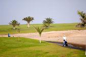 Golfista chůze — Stock fotografie