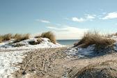 Pláž v zimě — Stock fotografie