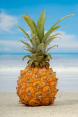Ananas ve egzotik Plajı — Stok fotoğraf