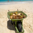 Coconuts for sale on exotic beach — Stock Photo #6542134
