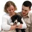 Young couple and puppy — Stock Photo