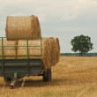 Trailer load of straw — Stock Photo
