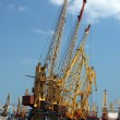 Cargo seaport cranes — Stock Photo