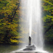 Stock Photo: Fountain in autumnal park