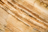 Coast structure with layers — Stock Photo