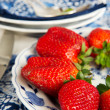 Fresh strawberries — Stock Photo #5592737