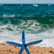 Blue starfish at the beach - Photo