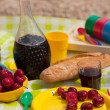 Picnic at the beach — Stock Photo #5830378