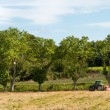 Stock Photo: French agriculture landscape