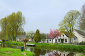 Typische niederländische bauernhäuser — Stockfoto