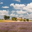 House in the French Provence — Stock Photo