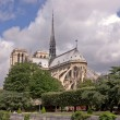 Notre Dame Cathedral, Paris, France — Stock Photo #5928251