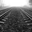 Railway Lines - Stock Photo