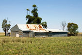 Old Shearing Shed — Stock Photo