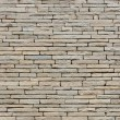 Stone wall — Stock Photo #6006121