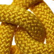 Yellow liana knot detail — Stock Photo