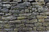 Mossy wet stone wall — Stock Photo