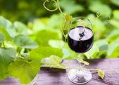 Red wine. — Foto de Stock