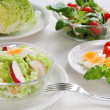 Healthy salads — Stockfoto