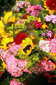 Flowers for sale — Stockfoto