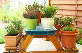 Outdoor flower pots — Stock Photo