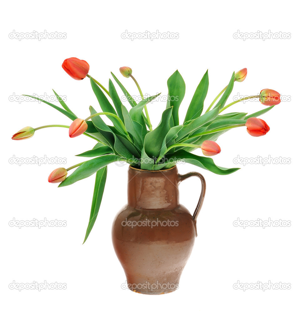 Red tulips in old fashioned jug isolated on white background — Stock Photo #5465149