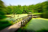 Casa de verano en el lago — Foto de Stock