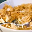 Bowl of cereal in the morning light — Stock Photo #6375249