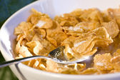 Bowl of cereal in the morning light — Stock Photo