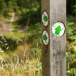 Stock Photo: Forestry bridlepath post