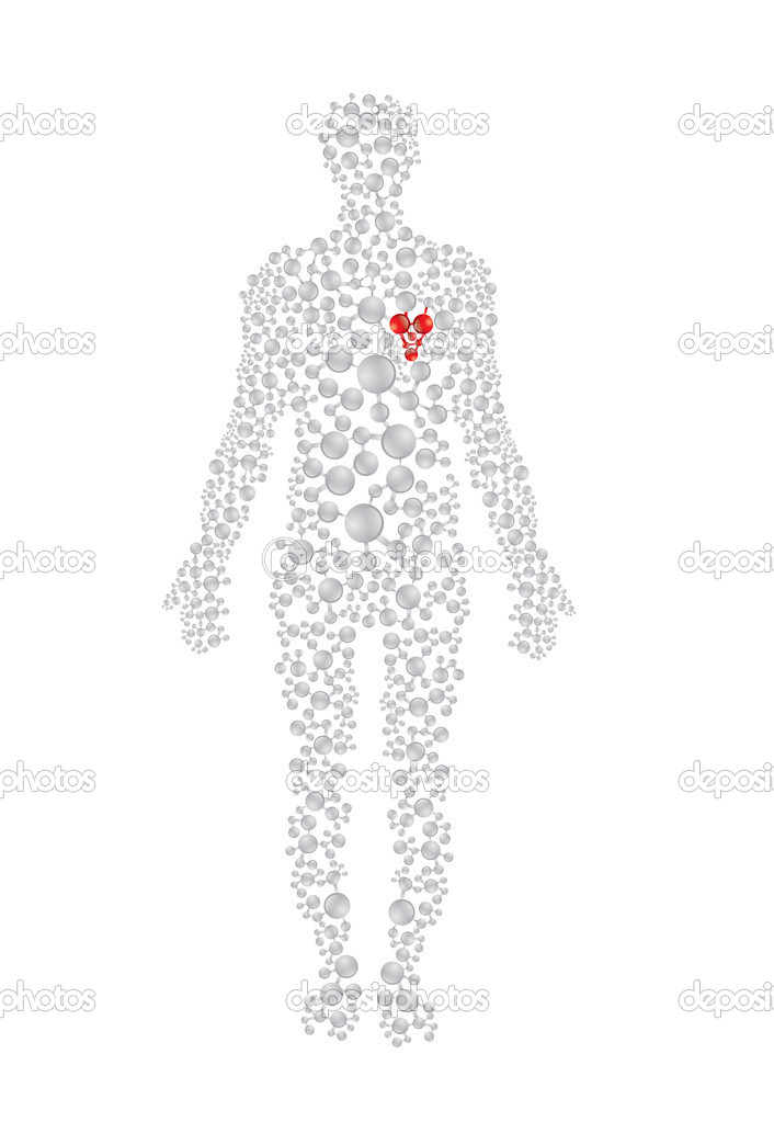 Human body concept with red heart. Editable vector format. — Stock Vector #6522260