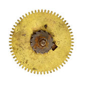 Cog wheel — Stock Photo