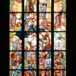 Window in catedral — Stock Photo