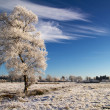 Idyllic winter scenery - Stock Photo