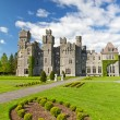 Medieval Ashford castle — Stock Photo #5589326