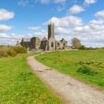 Quin abbey in Co. Clare — Stock Photo #5589338