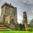 Stock Photo: Medieval Blarney Castle