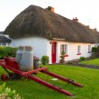 Irish traditional cottage house — Stock Photo #5589436