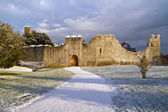 Castle in Adare at winter — Stock Photo