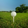 Golf ball on the tee — Stock Photo #5824513