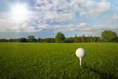 Golf ball on the tee — Stock Photo