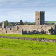 Ruins of Clare Abbey — Stock Photo