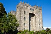 Bunratty castle — Stock Photo