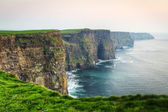 Twilight at Cliffs of Moher — Stock Photo