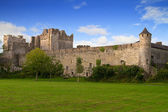 Cahir castle — Stock Photo