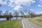Bicycle path in the park — Stock Photo