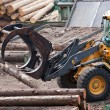 Stock Photo: Skidder hauling logs at sawmill.