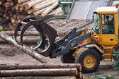 Skidder hauling logs at sawmill. — Stock Photo