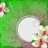 Spring dots grunge background with orchid flowers — Stok fotoğraf